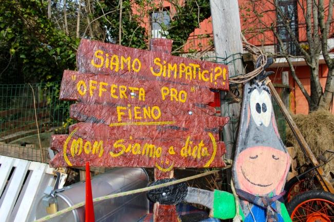 Allegra Fattoria in Carso - Trieste